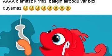airpods-akımı-kırmızı-balık